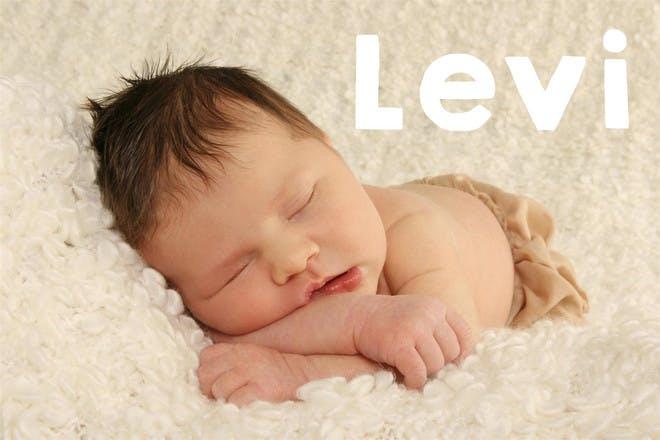 18. Levi