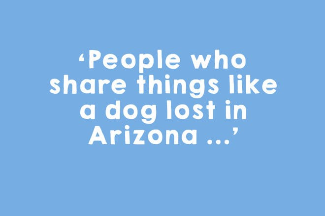 1. The totally unhelpful 'lost dog' share