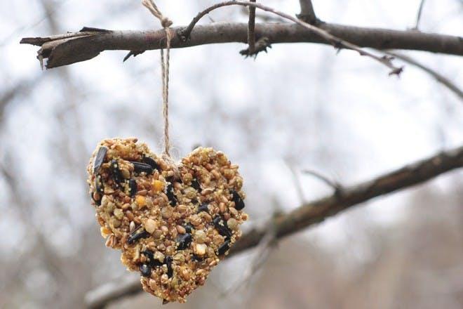 heart bird feeder