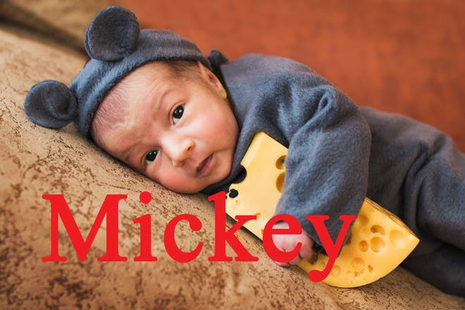 Baby name Mickey