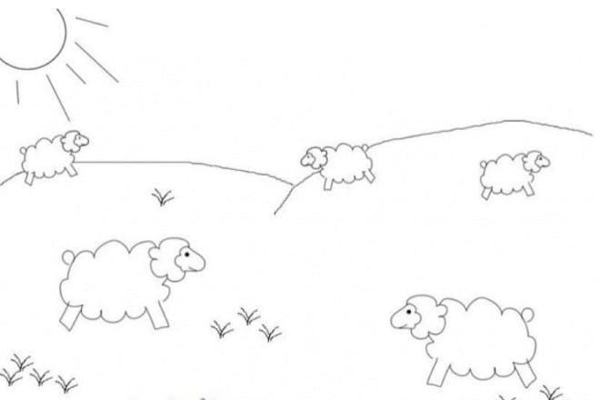 13. Spring lambs