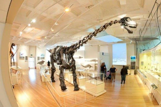 New Walk Museum