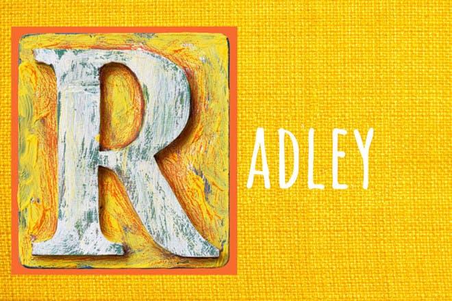 Baby name Radely