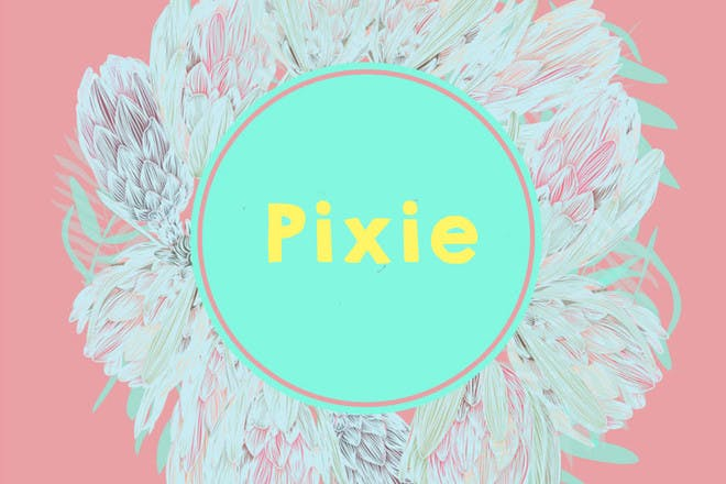 baby name Pixie