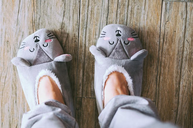 Novelty cat slippers