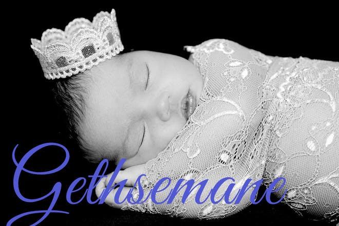 66. Gethsemane