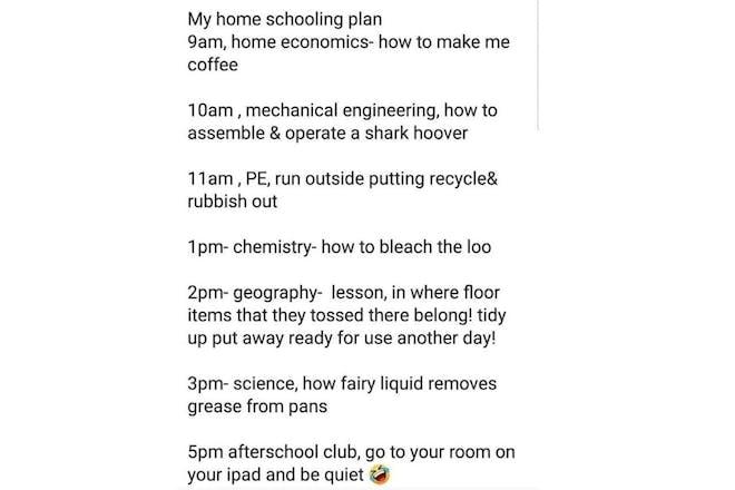 Viral homeschooling plan