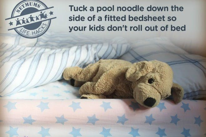 toy dog in bed