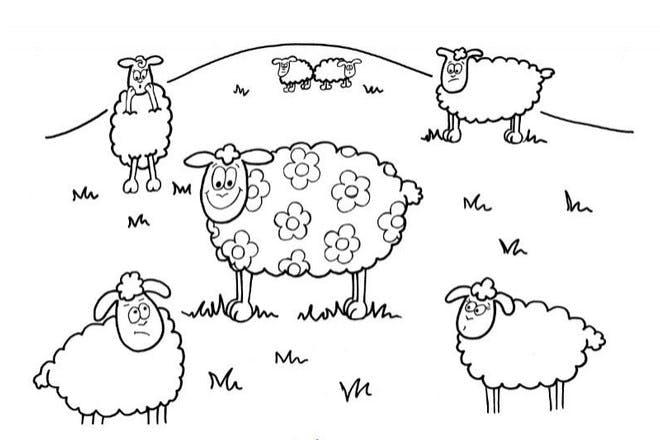 Flowery sheep