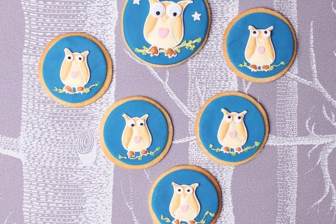 Night owl biscuits