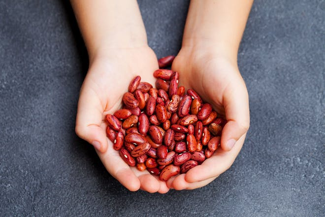 CHild's hands holding dried beans