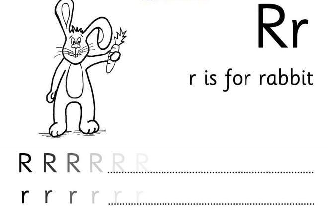 rabbit holding carrot