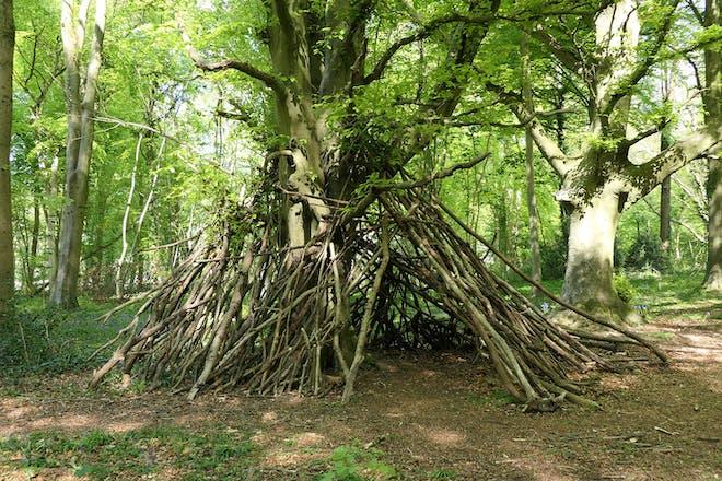 kids' den in the woods
