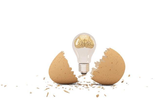 light bulb inside egg