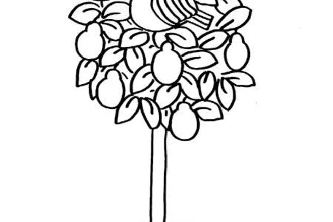 partridge in pear tree colouring
