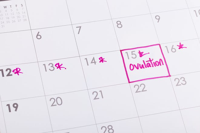 日历上有粉红色的排卵标记