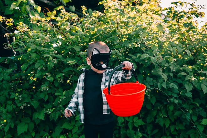 Toddler wears Halloween cat mask while carrying large red bucket