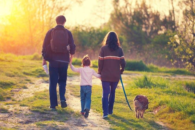 Family go on dog walk