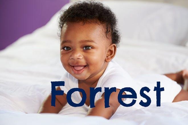 14. Forrest