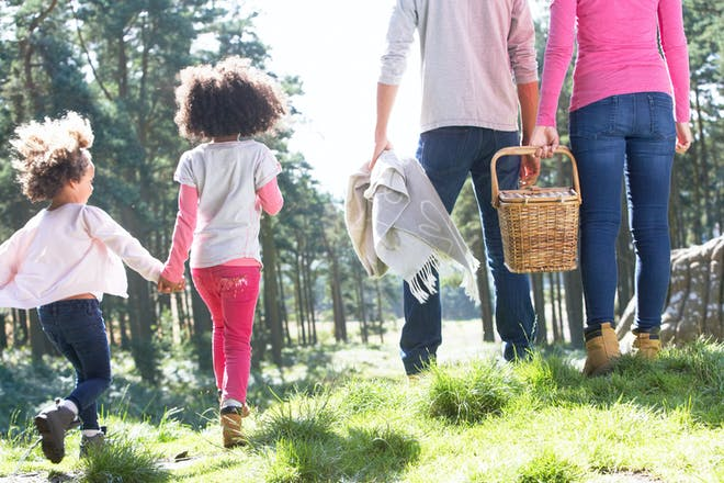 family walking with picnic basket