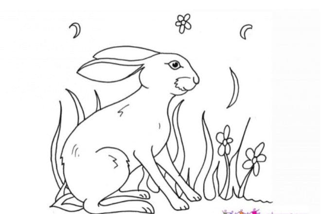 18. March hare