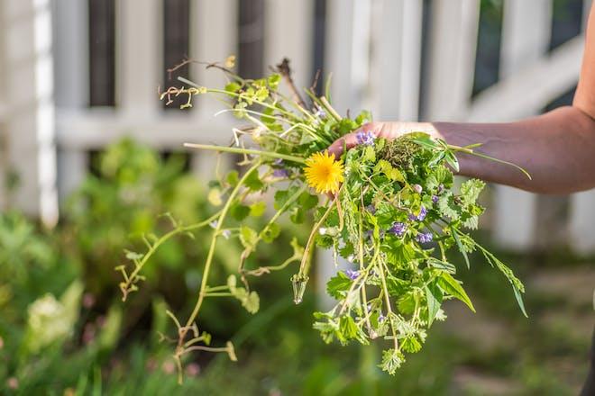 Weeding gardening