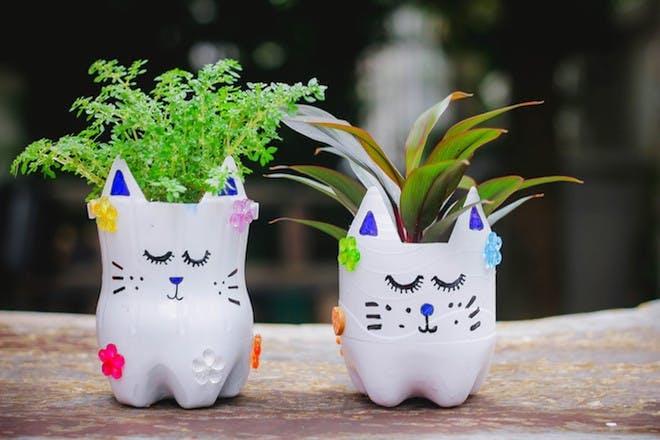 Upcycled bottle plant pots