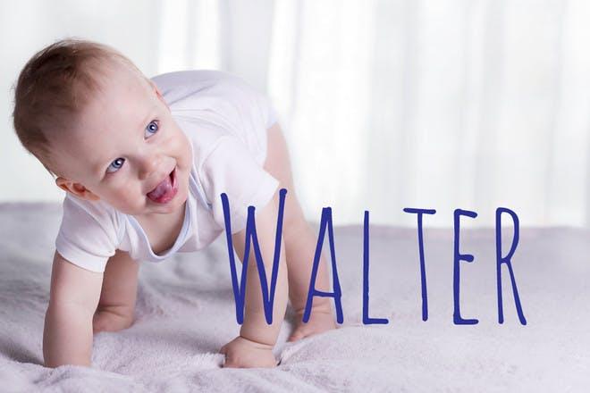 6. Walter