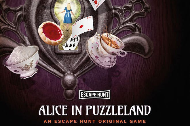 Alice in Puzzleland poster