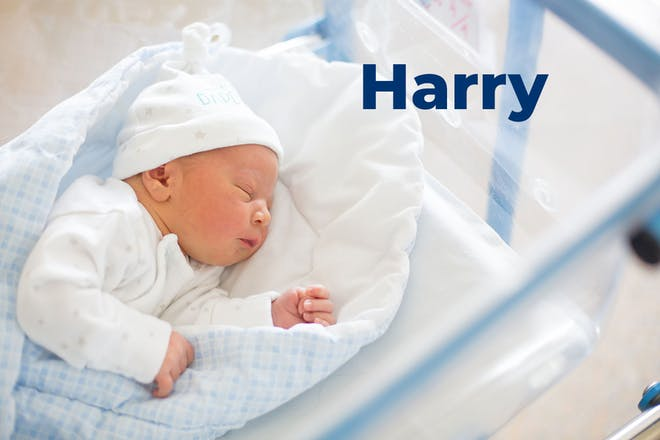 Newborn baby in hospital cot. Name Harry written in text