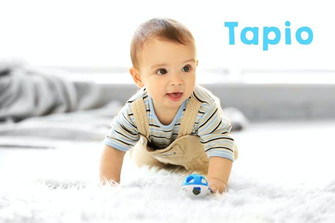 28. Tapio