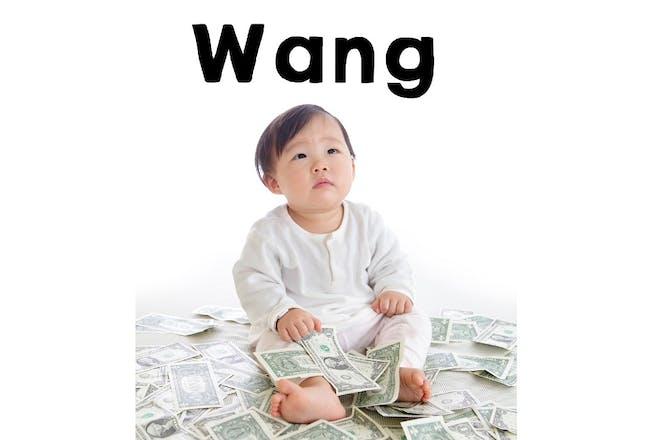26. Wang