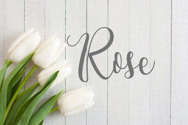 29. Rose