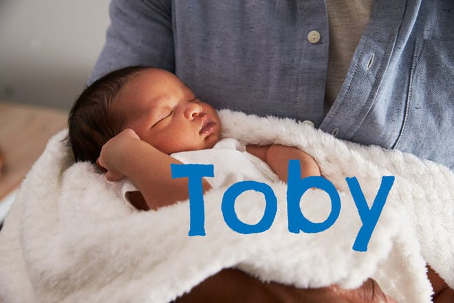 Baby name Toby