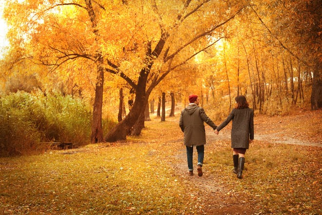couple walking in autumnal wood