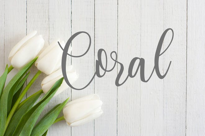 8. Coral