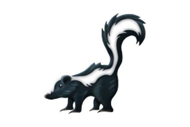 5. The skunk
