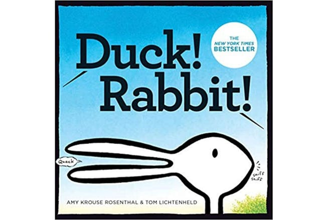 Duck! Rabbit! book cover
