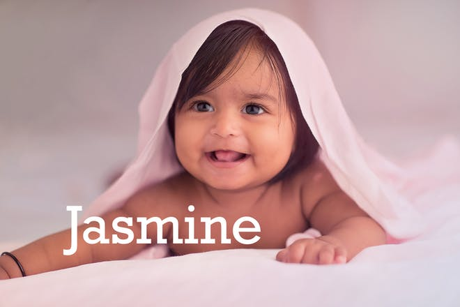 Jasmine baby name