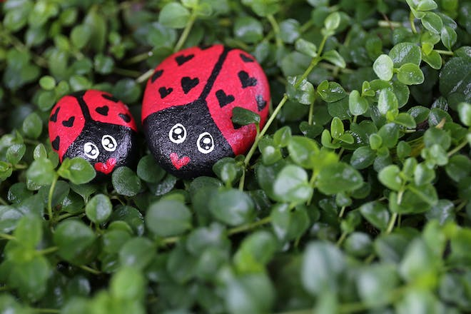 two sones painted to look like ladybirds