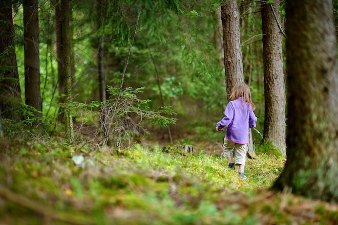 Girl walking forest