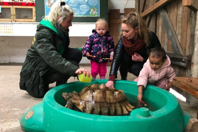 8. Lancaster Park & Animal Farm