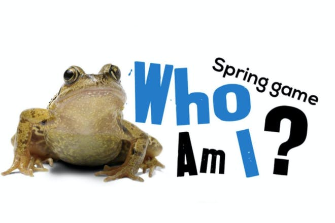 frog next to the title who am i?
