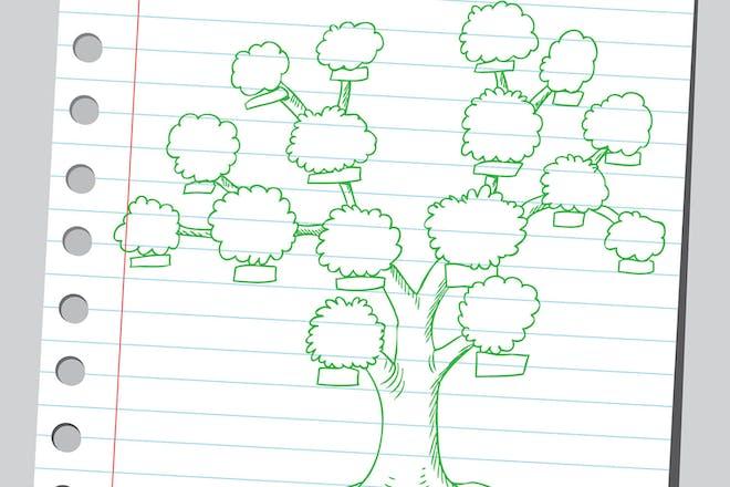 hand drawn family tree