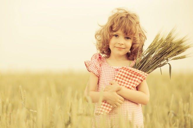 little girl in a cornfield in gingham dress