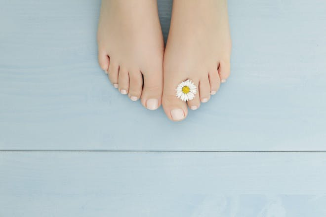 Women's pedicured feet with daisy between toes