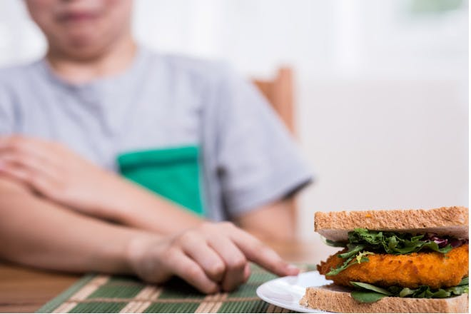 Child pointing to a sandwich