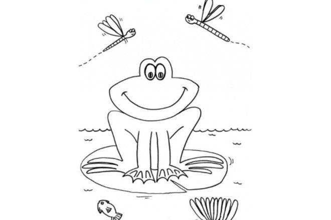 7. Spring frog