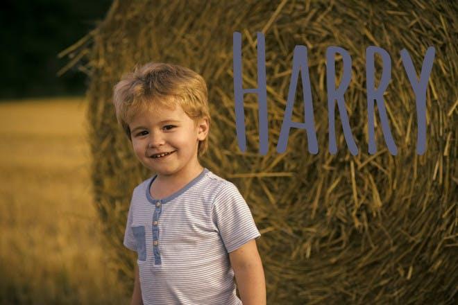 Harry name
