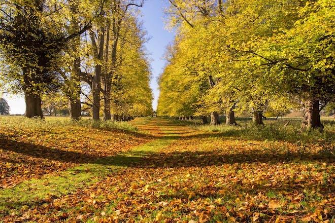 Charlecote Park, National Trust, Warwickshire